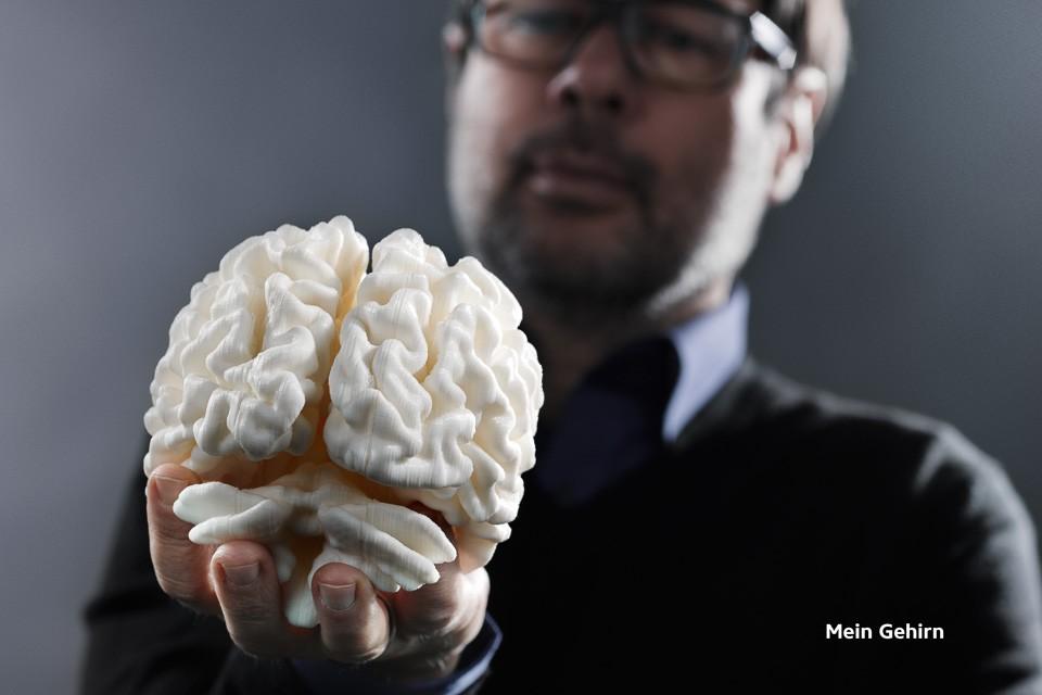 Mein Gehirn / My Brain